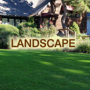 Greenplay Organic Turf for Landscapes